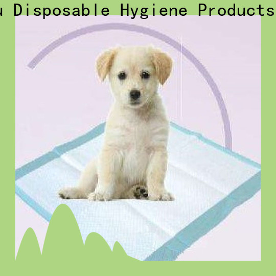 Moosee cotton pets diaper company for dog